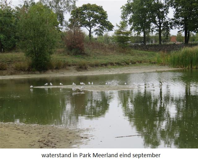 12 waterstand in vijver Meerland.jpg